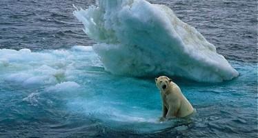Ofrecen 10.000 dólares a quien refute científicamente el cambio climático