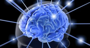 Llaman a fomentar la donación de cerebros para investigar Alzheimer