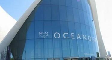 Contrato a modo permitió el fraude de Oceanografía
