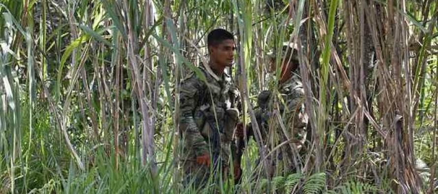Liberan las FARC a soldado capturado antes del alto al fuego
