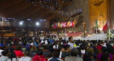 Más de 7 millones de peregrinos se congregaron en la Basílica