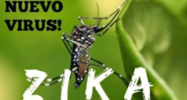 Confirman dos casos de zika en Miami-Dade