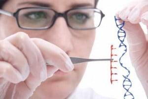 Manipulacion-genetica-