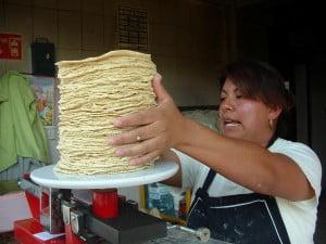 Tortillas de maiz (1)