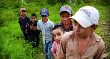 Conflictos bélicos y políticas modifican estatus migratorio