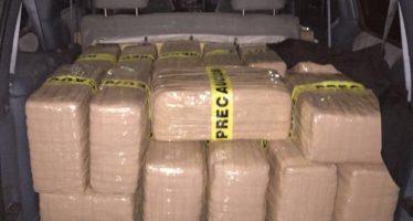 Decomisan 425 kilogramos de marihuana en municipio de Nuevo León
