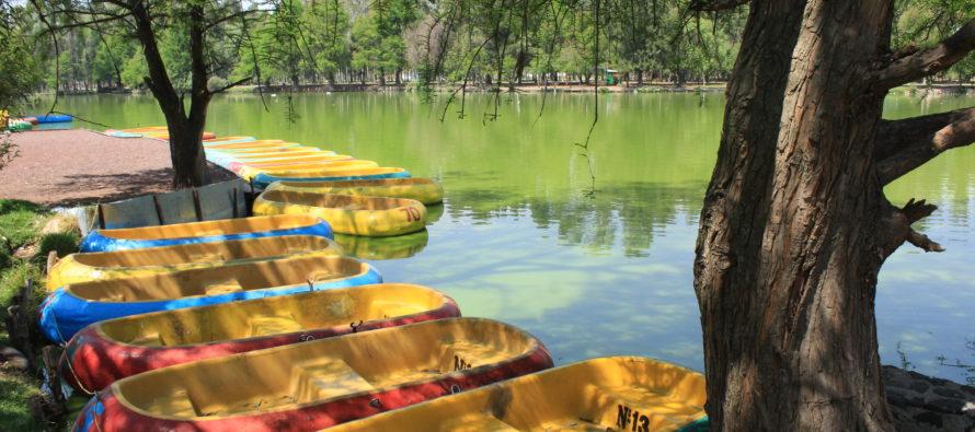CONSERVAR XOCHIMILCO COMO PATRIMONIO MUNDIAL PARA LA HUMANIDAD </span></p></span></p>Es importante brindar incentivos a Xochimilco para mantenerla como una región dedicada a la conservación ecológica y sustentable: Avelino Méndez </span></p></span></p>Mauricio Laguna Berber*