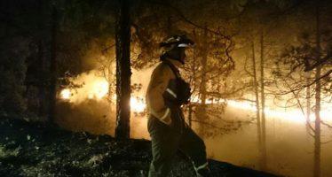 Incendio en Islas Canarias ha arrasado 4 mil hectáreas