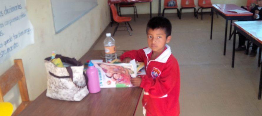 Sección 22 de la CNTE en Oaxaca acuerda regresar a clases