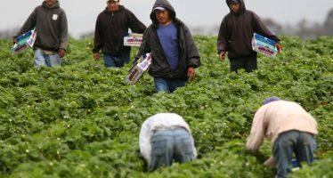 Medio millón de mexicanos indocumentados salió de EU desde 2009