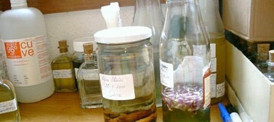 Desarrollan fijador de perfume a partir de planta silvestre, en México