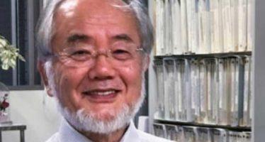 Yoshinori Ohsumi, de Japón, gana el Premio Nobel de Medicina