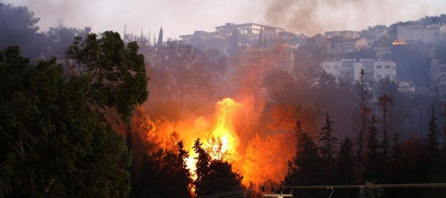 Ola de incendios en Haifa, Israel, lleva a la evacuación de más de 80 mil personas
