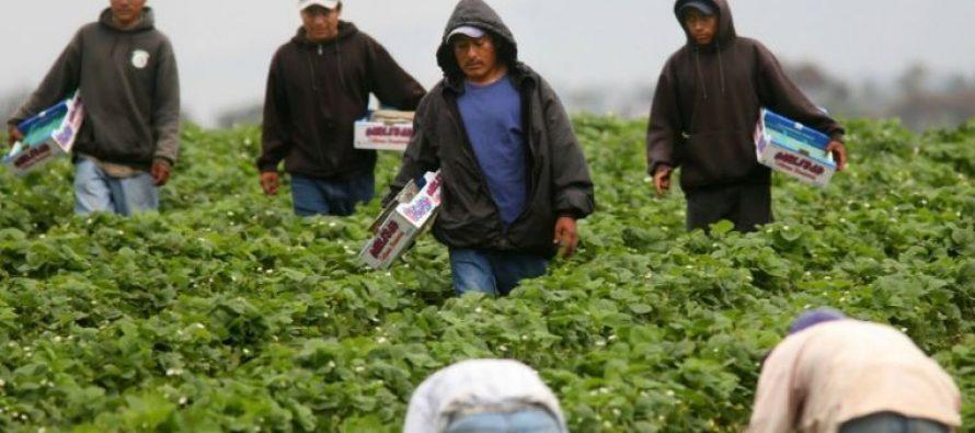 Denuncian en El Vaticano abusos de que son víctimas migrantes mexicanos en EU