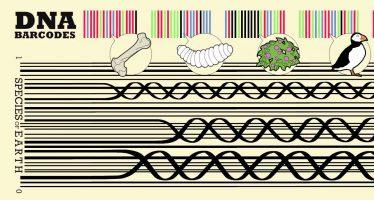 Instituciones casi completan Biblioteca de códigos de barra de la vida animal y vegetal