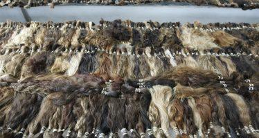 Venezolanas venden su cabello en Colombia para comprar comida