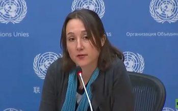 Periodista freelance destapa en la ONU mentiras de medios occidentales sobre Siria