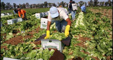 Empresarios agrarios de EU piden en carta a Trump preservar logros del TLC