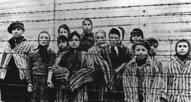 Holocausto, masacre, destrucción