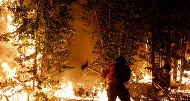 """Decretan """"estado de catástrofe"""" en Chile por la magnitud de incendios forestales"""