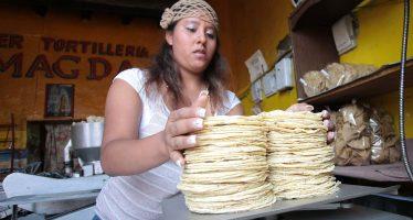 Profeco monitorea y verifica precios en tortillerías para evitar abusos