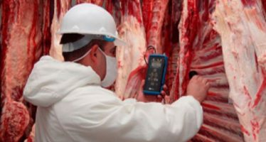 Al menos 13 productos mexicanos de origen animal se exportarán a 15 países