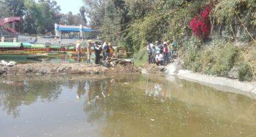 Concluyen trabajos de reparación en embarcadero de Zacapa, en Xochimilco