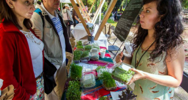 Se llevará a cabo el Mercado del Trueque en el Bosque de Tlalpan, este domingo