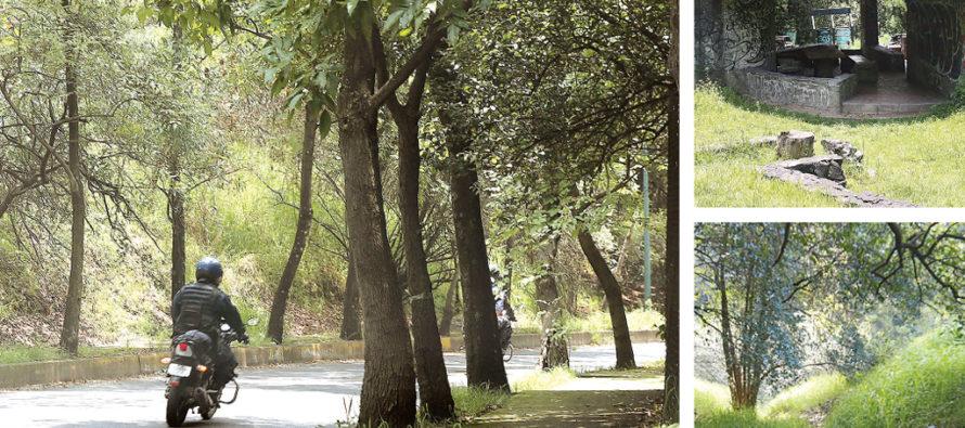Rehabilitarán la Tercera Sección del Bosque de Chapultepec