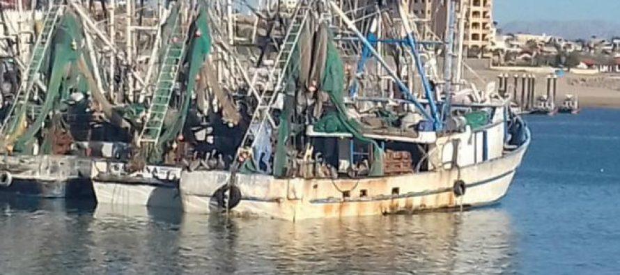 Marina y Profepa detectan y aseguran tres embarcaciones que efectuaban pesca ilegal