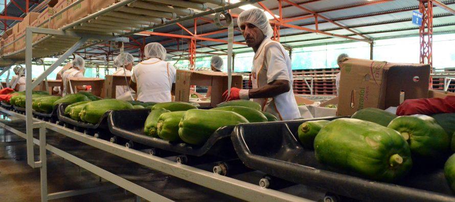 Aumentaron 8% las exportaciones en febrero, anuncia el INEGI