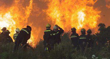 Se han registrado 1,622 incendios forestales en lo que va de 2017, en el país