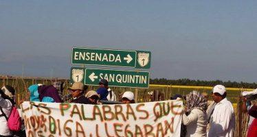 Jornaleros de San Quintín piden intervención de la STPS para que se cumplan sus demandas