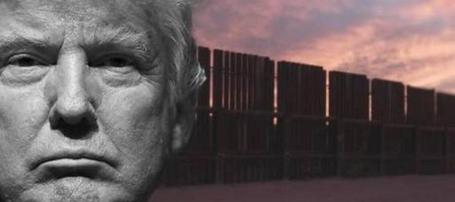 Presentan la primera demanda formal contra construcción del muro de Trump