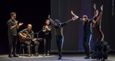 INTERflamenca cimbrará el escenario fusionando danza con arte sonoro y visual para interpretar 7 formas de sacarla sonido a la Tierra