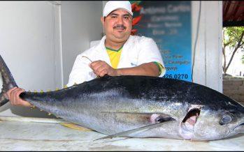 OMC autoriza a México imponer sanciones a EU por etiquetado de atún