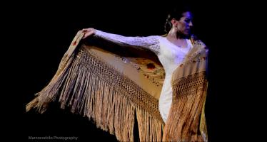 Gala de flamenco en el Palacio de Bellas Artes con tres figuras representativas de diferentes generaciones