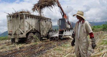 Productores de azúcar pedirán investigación por dumping a la fructosa de EU