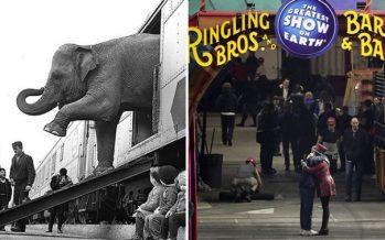 Circo Ringling Bros se despedirá del público al dar su última función