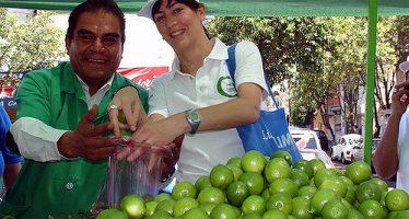 Sube el aguacate en mercados del país; el limón baja
