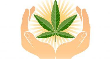Derivados de mariguana estarían en cuadro básico de medicinas: Mikel Arriola