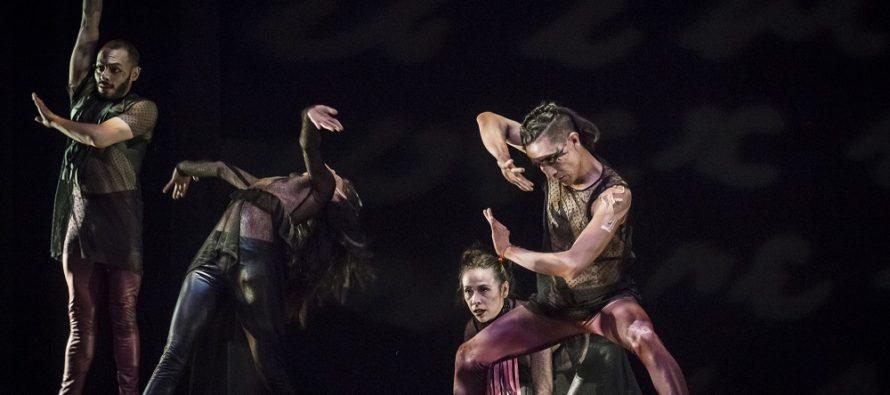 La compañía Aksenti Danza Contemporánea celebrará su 25º aniversario con funciones especiales de Nisi Dominus