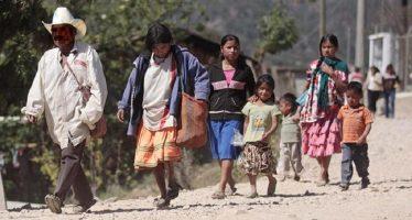 Más de 800 familias huyen de pueblos de Guerrero ante la violencia de los cárteles