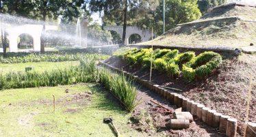 Dan mantenimiento a áreas verdes de Xochimilco
