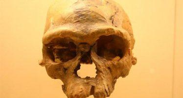 Hallan restos de 'Homo sapiens' de entre 300 mil y 350 mil años de antigüedad