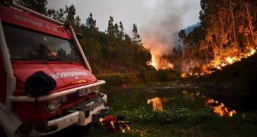 Gigantesco incendio en el centro de Portugal causa al menos 61 muertos