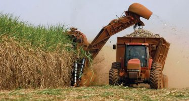 Acuerdo del azúcar entre México y EU prolonga perjuicio a consumidores: Washington Post