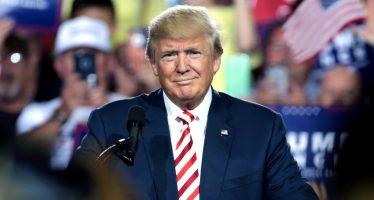 "Trump llama a Kim Jong Un ""perrito enfermo"""