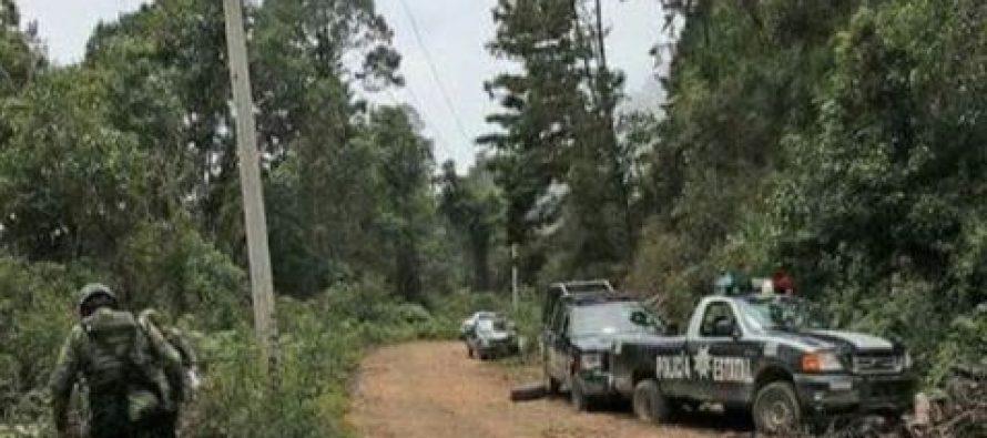 Siete muertos, saldo de asalto a camioneta en Guerrero