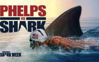 Cómo perdió Phelps ante un tiburón